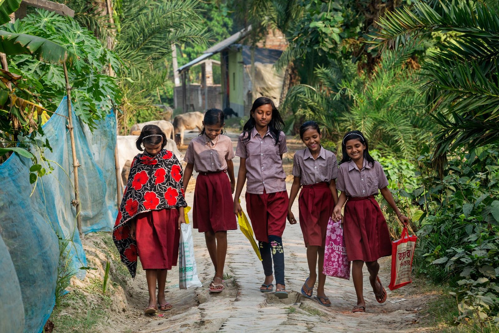 Girls walk home from school in South 24 Parganas. For many girls in rural India, education ...