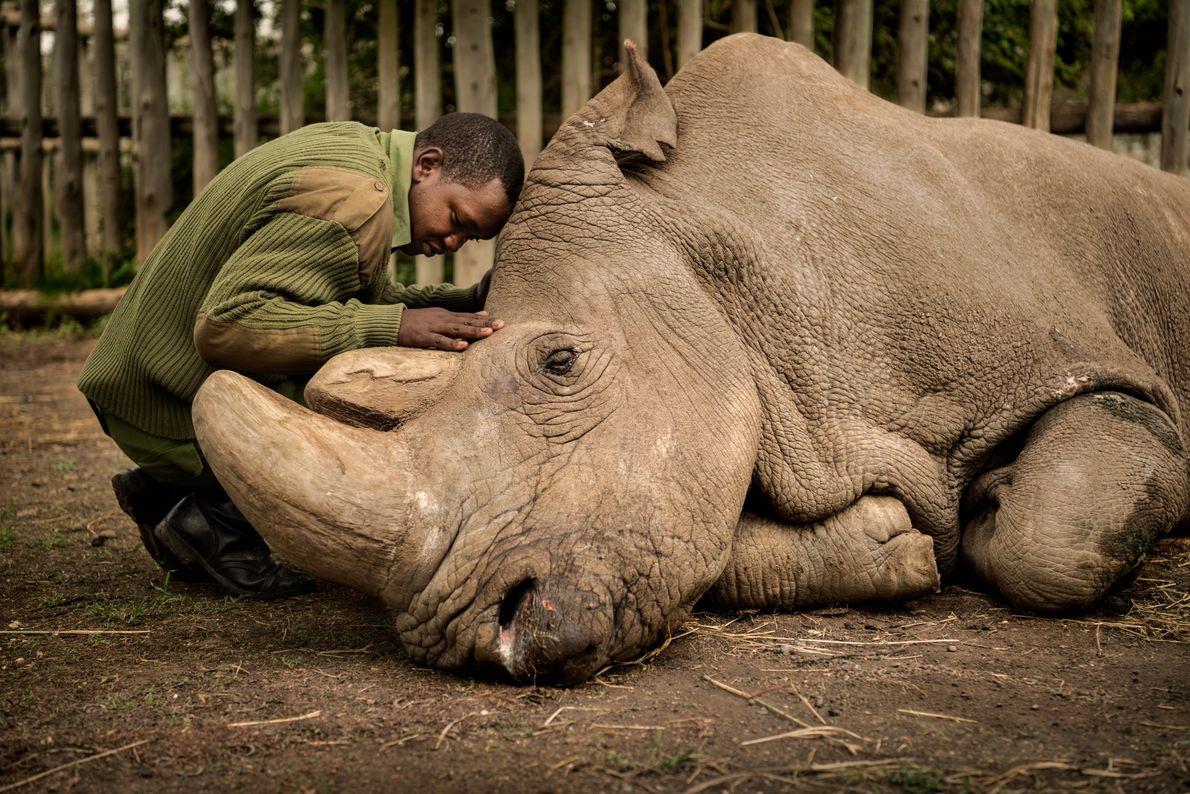 "LAIKIPIA COUNTY, Kenya ""This image took 10 years to make,"" says Montana-based photographer Ami Vitale, who first ..."