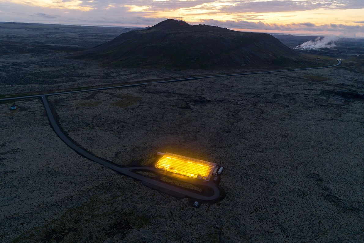 Nestled in a lava field on Iceland's Reykjanes Peninsula, this carbon-negative greenhouse holds up to 130,000 ...