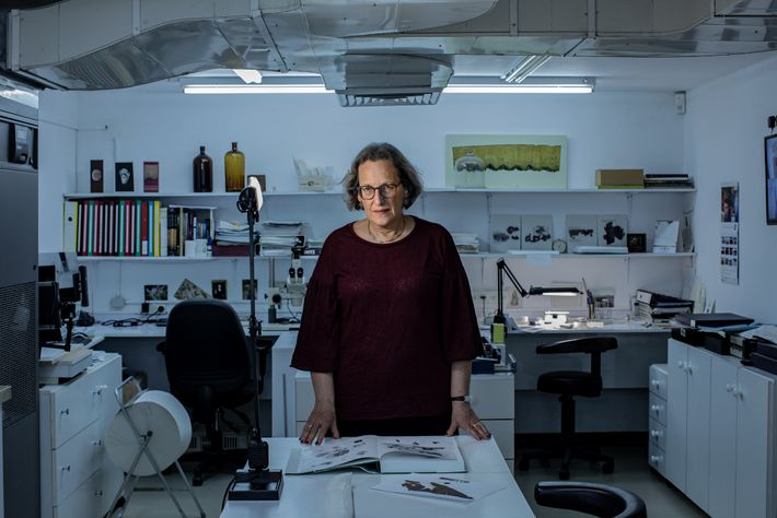 Pnina Shor, curator and head of the Israel Antiquities Authority Dead Sea Scrolls Conservation Laboratory in ...