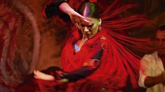 Local flamenco dancer, Seville.