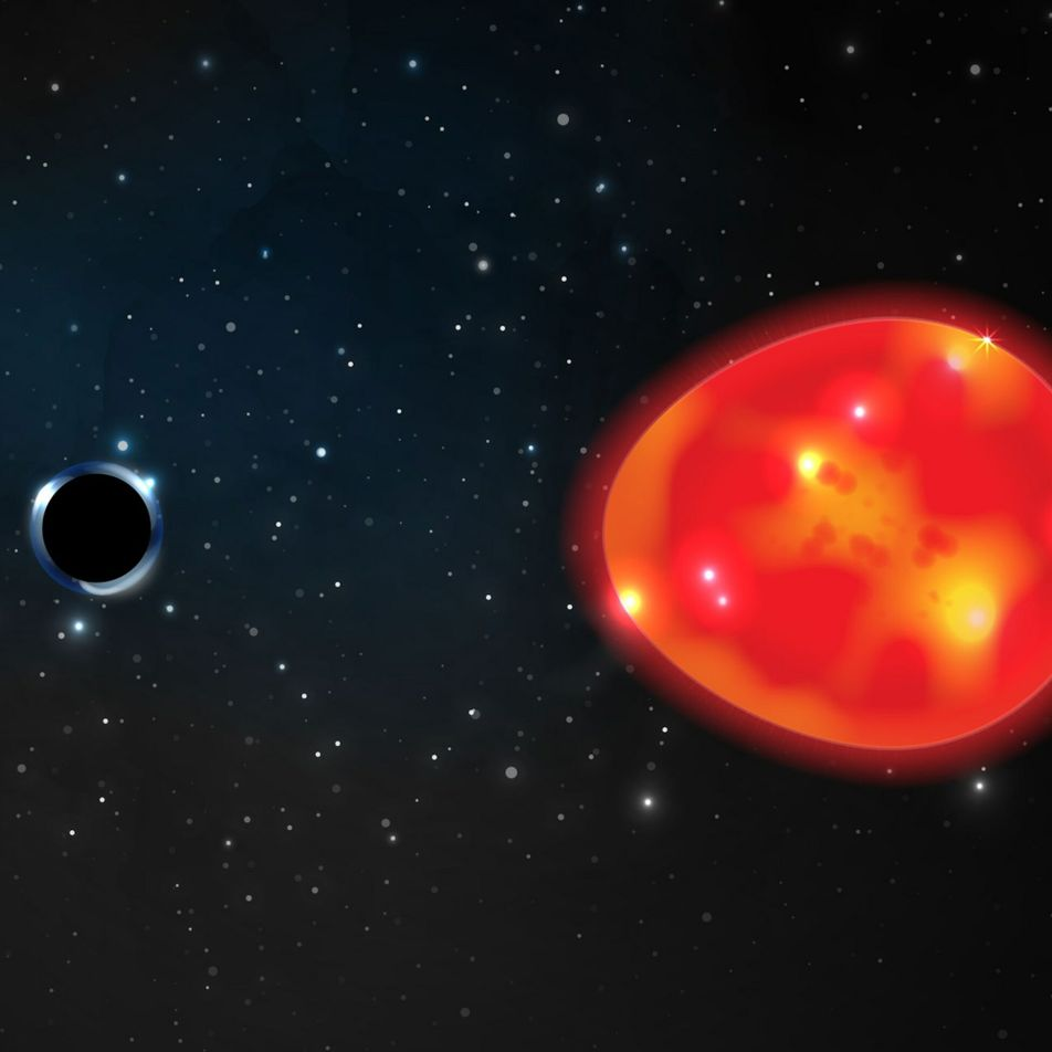 Newfound black hole may be the closest to Earth