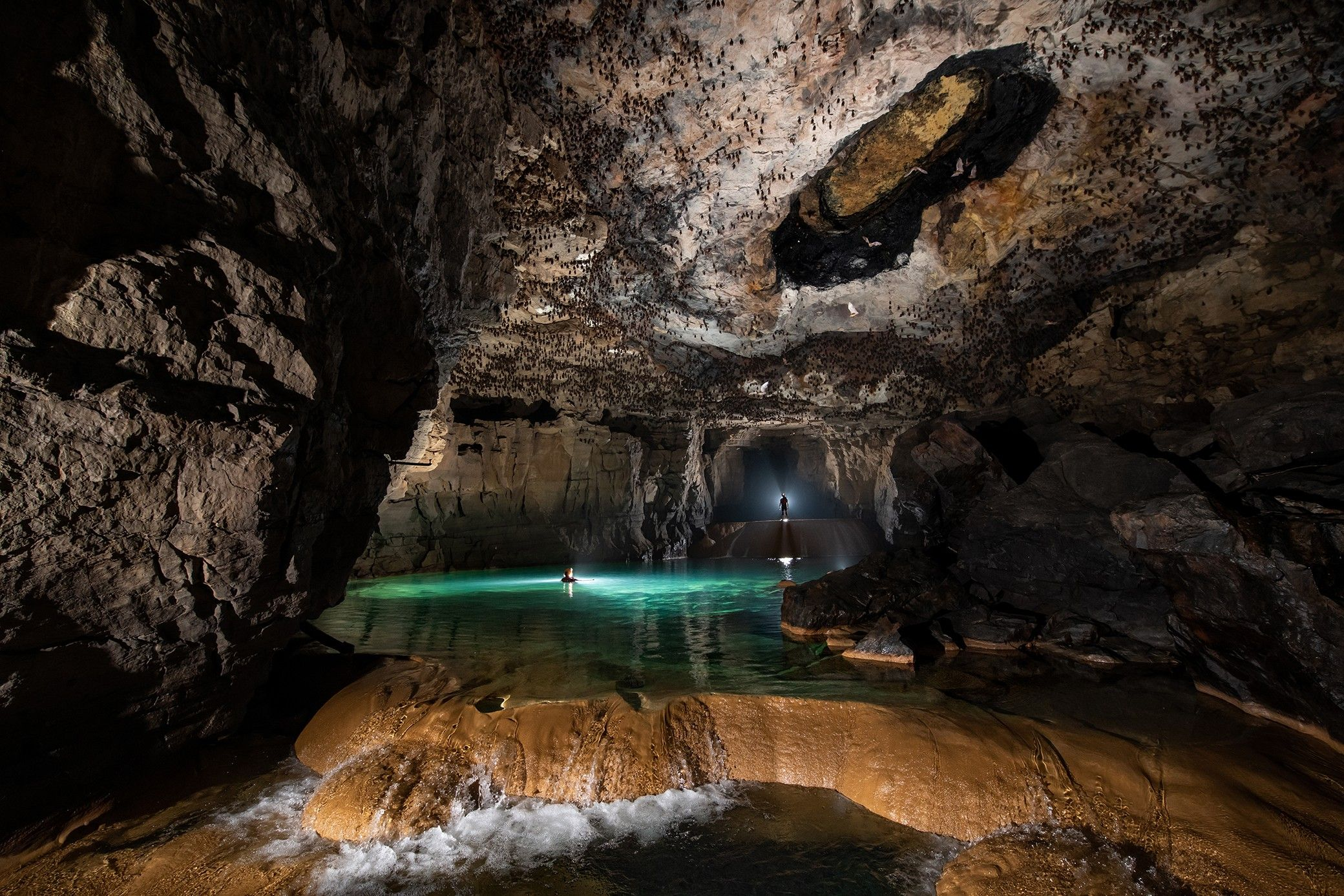 World's largest cave fish discovered in India