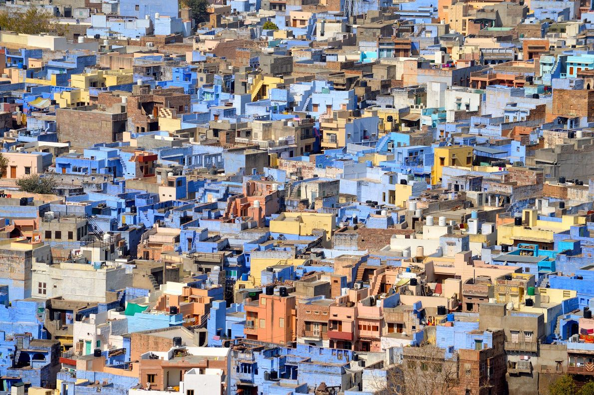 Picture of Jodphur, the blue city, in Rajasthan, India.
