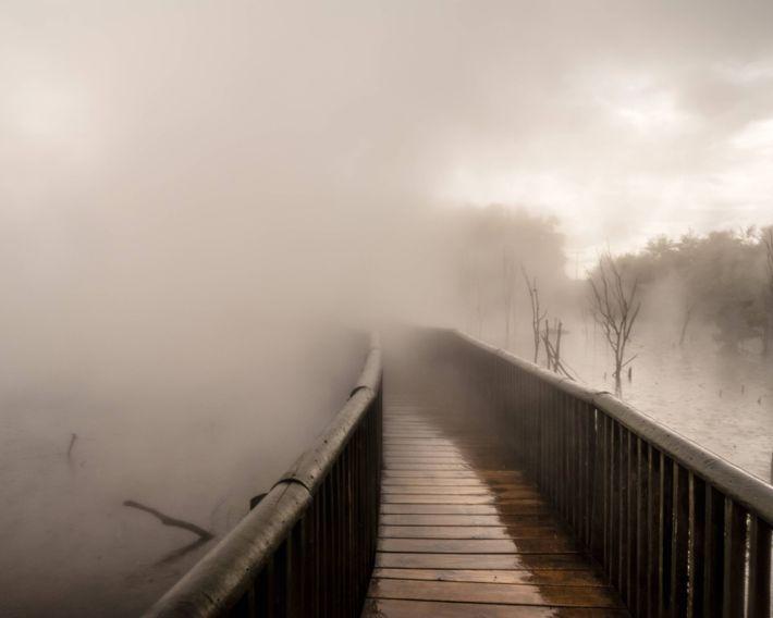 Steam from geothermal activity envelopes a boardwalk in Kuirau Park, Rotorua.
