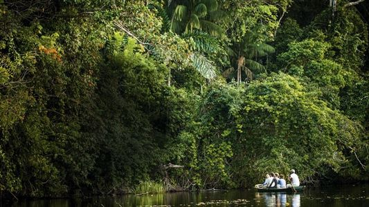 Amazon: Into the Bolivian backwaters