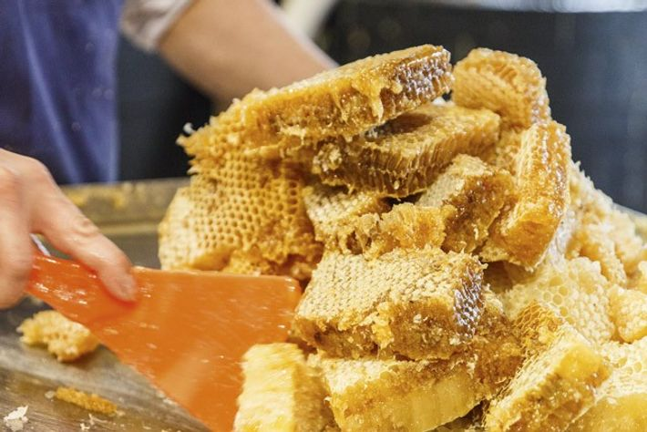 Collecting honeycomb to make Chain Bridge Honey Farm's many products. Image: Annapurna Mellor