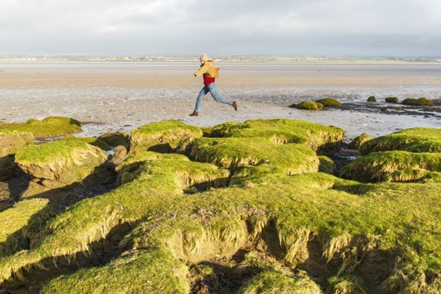 Solway Coast Area of Outstanding Natural Beauty. Image: Annapurna Mellor