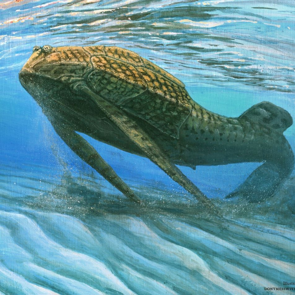 Bones evolved to act like batteries, 400-million-year-old fish suggest