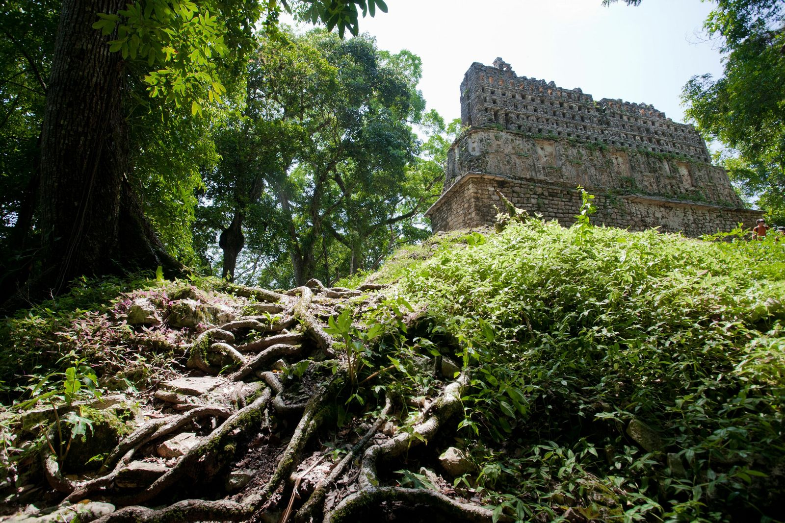 The citadel of Yaxchilan.