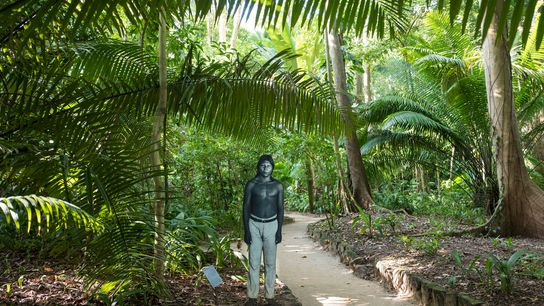Along a path on the grounds of the Museu Paraense Emílio Goeldi, in Belém, stands a ...