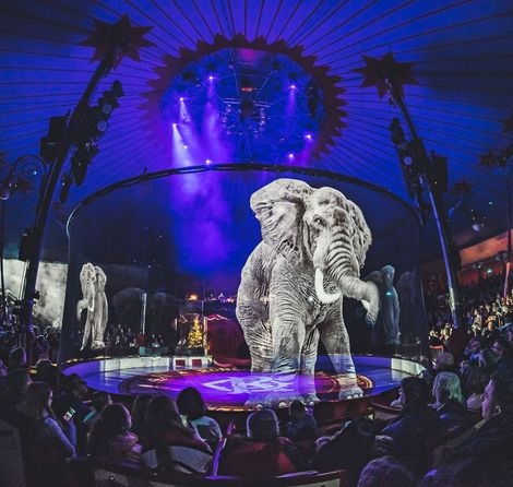 Holographic elephants shine new light on tradition—and other innovations