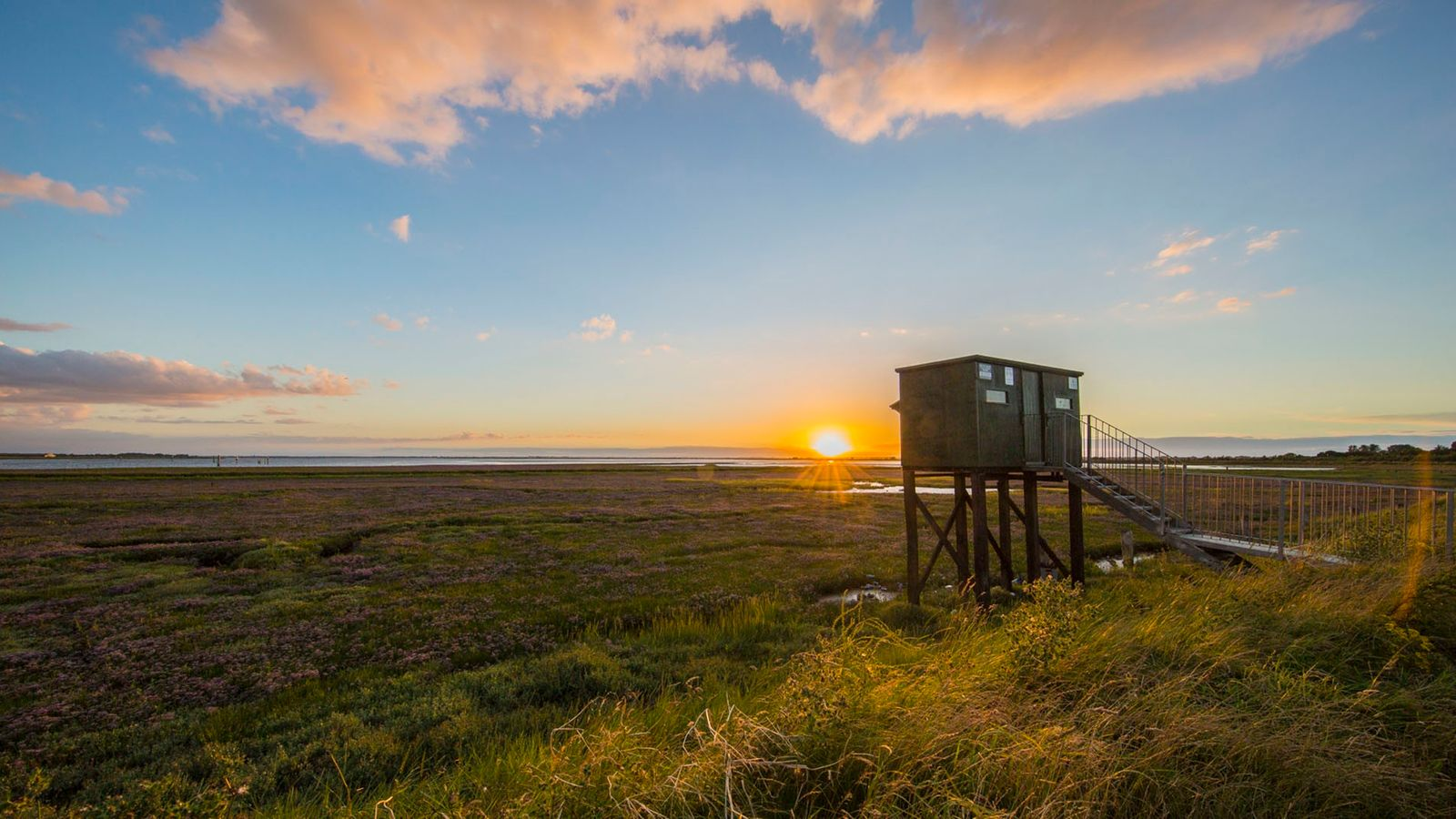 RSPB reserve at Breydon Water is a stellar spot for frequent sightings of bitterns and a ...