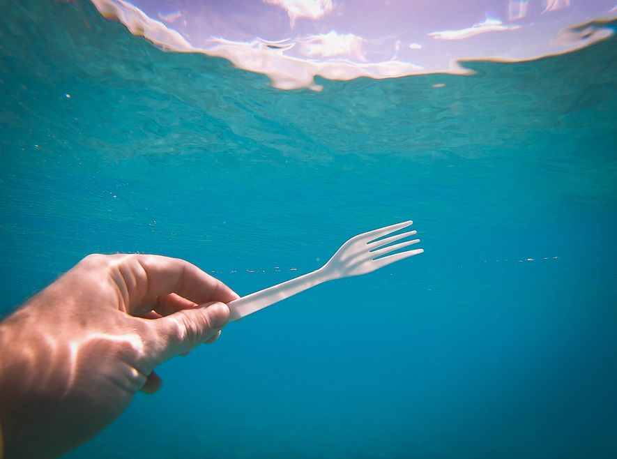 Endgame: plastic cutlery has been identified as being especially harmful to sea creatures.