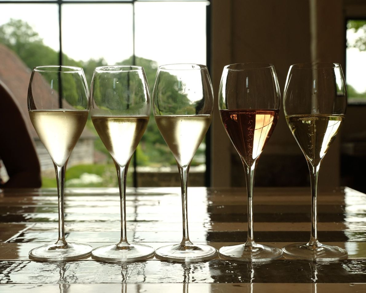 As one of England's largest wineries and producer of sparkling wines, Nyetimber estate offers quite a ...