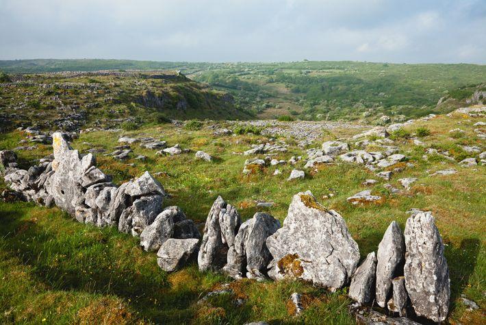 A stone wall accents a bucolic Burren landscape near Kilfenora.
