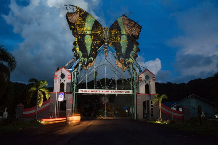 A sculpture of a  Papilio blumei—symbol of local pride—tops the gateway to Bantimurung Ecotourism Park. The ...