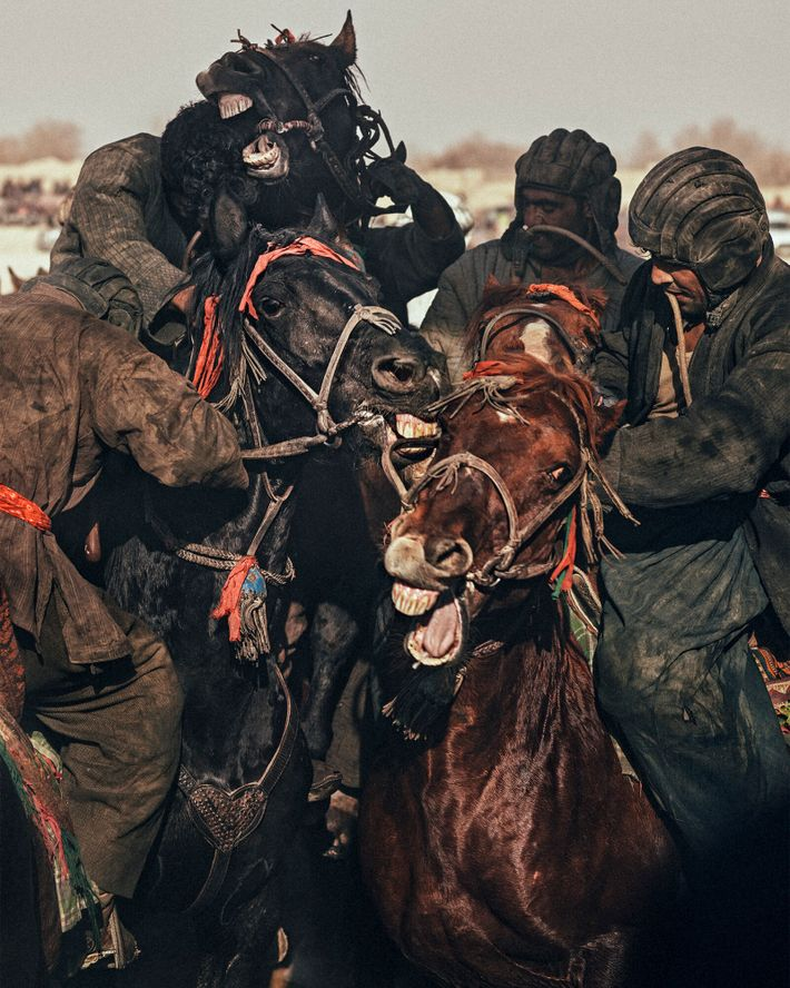 Chapandazan crash together during a match in Dawlatabad. A rider's goal is to position his horse ...