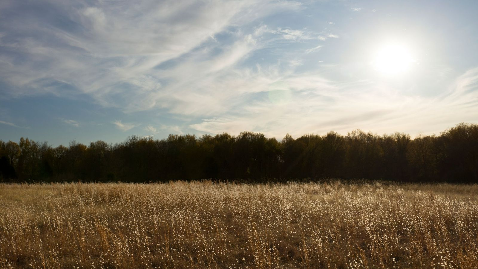 Hazy sun over field of wild grass and cloudy blue at Spiro Mounds Archeological Site in ...