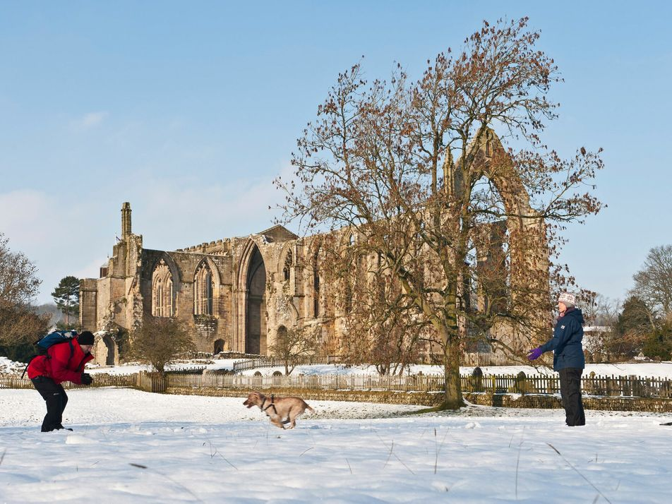 Explorers and writers share their favourite winter walks in the UK