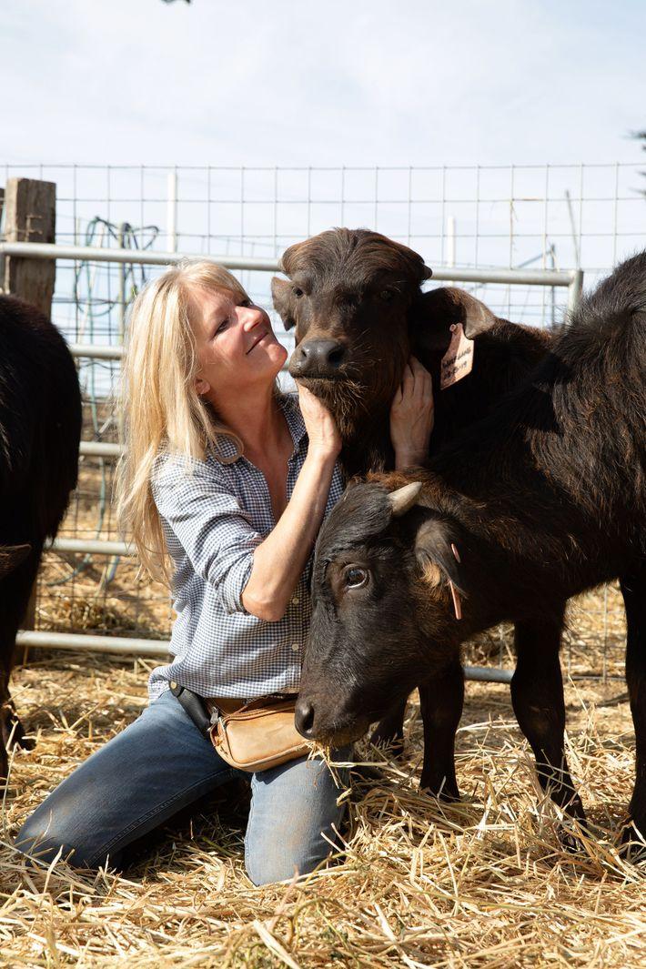 Audrey Hitchcock Ramini with her calves.