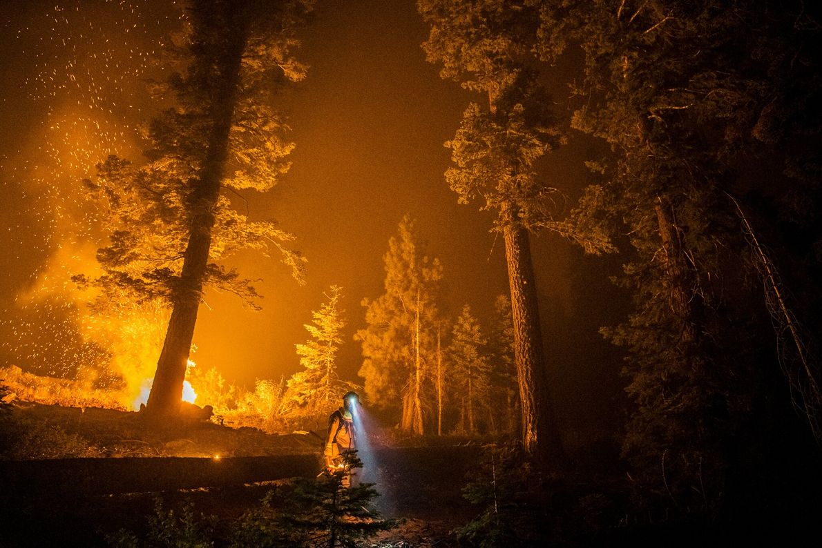California suffered its worst fire season on record this year. Here a firefighter walks through the ...