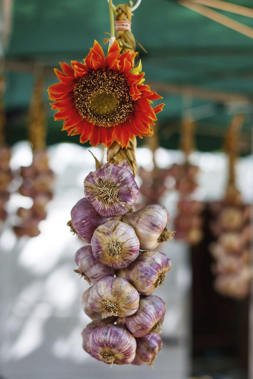 Garlic at Arles Market.
