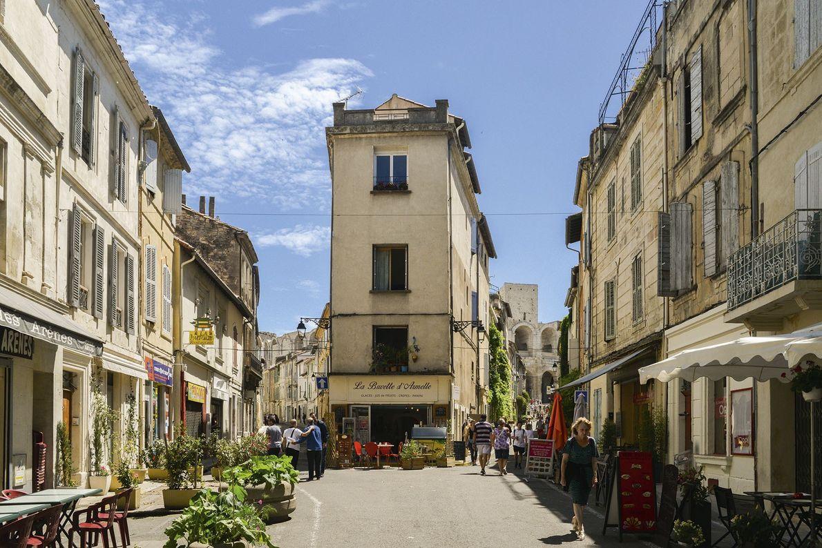 A taste of the Camargue, France