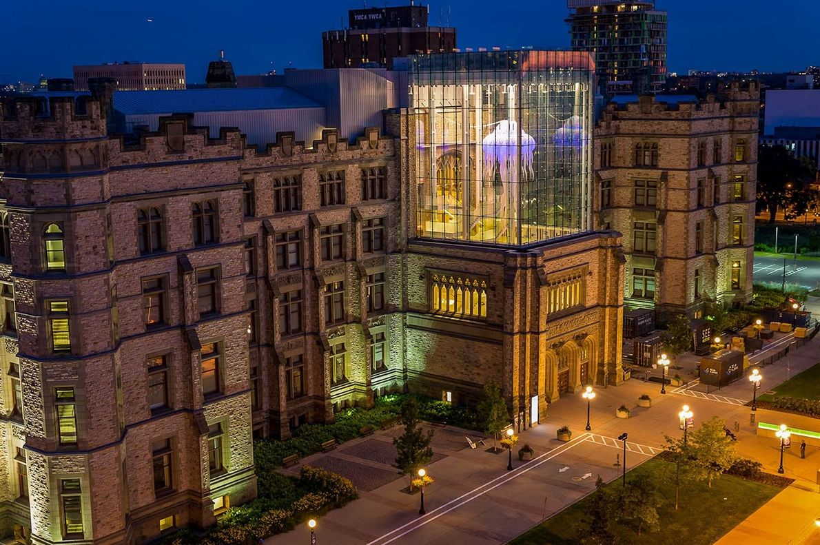 View of Canada's Museum of Nature in Ottawa and its Queens' Lantern glass exhibiting a giant ...