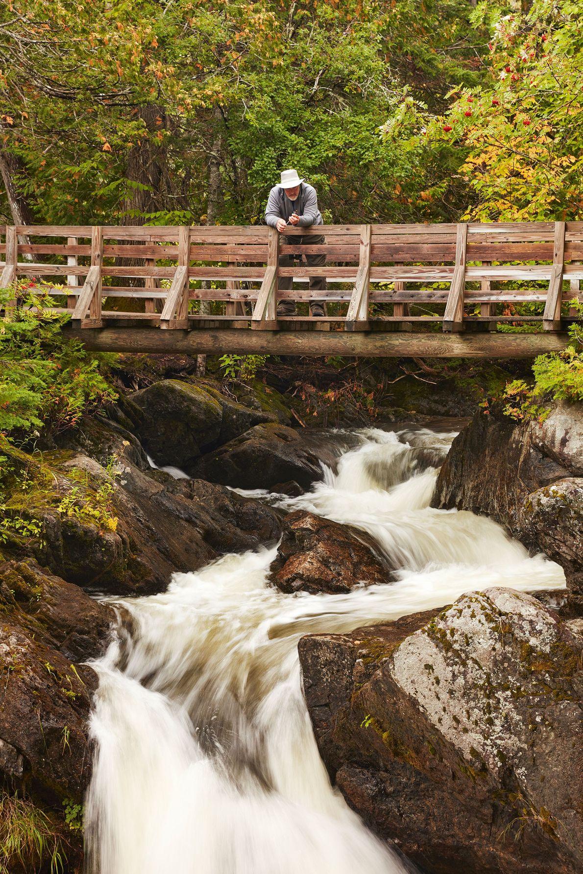 Crossing a bridge in Mount Carleton National Park.
