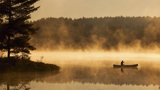 Ontario: The pleasures of paddling in canoe country