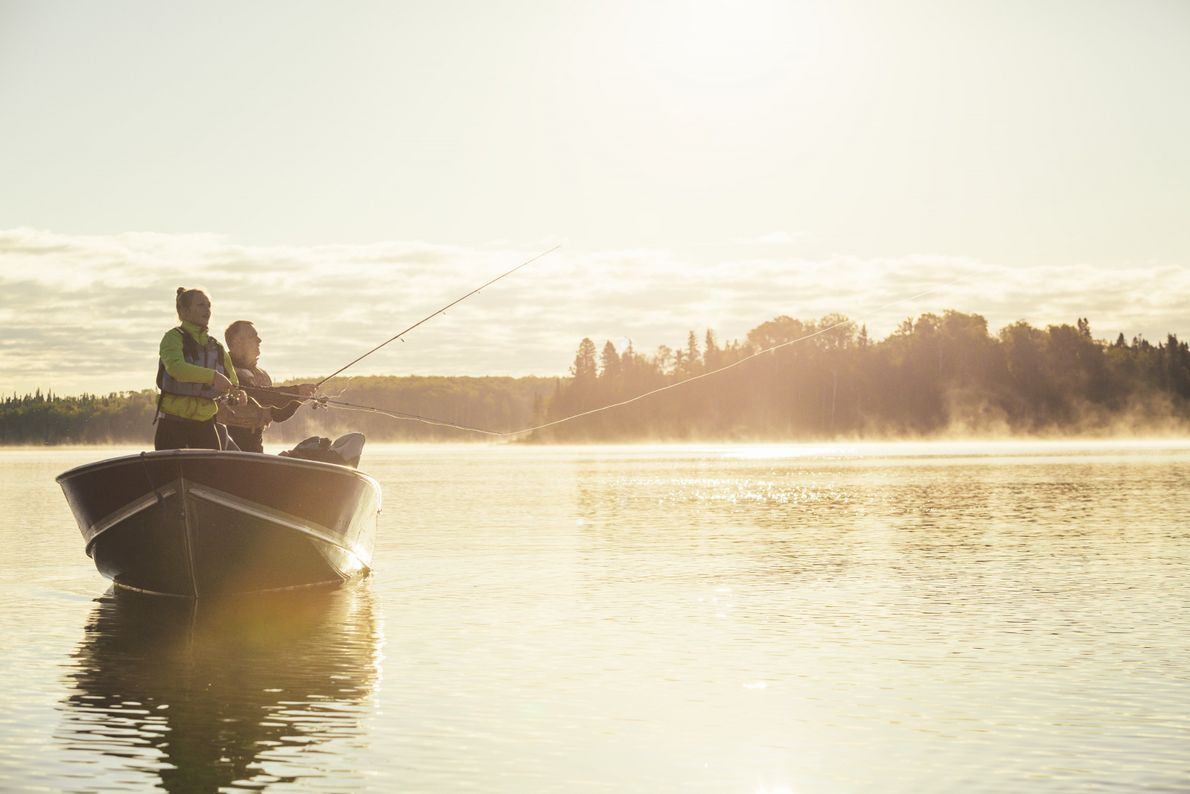World-class wilderness canoeing, including over 2,000 kilometres of lake and river routes and some excellent fishing.
