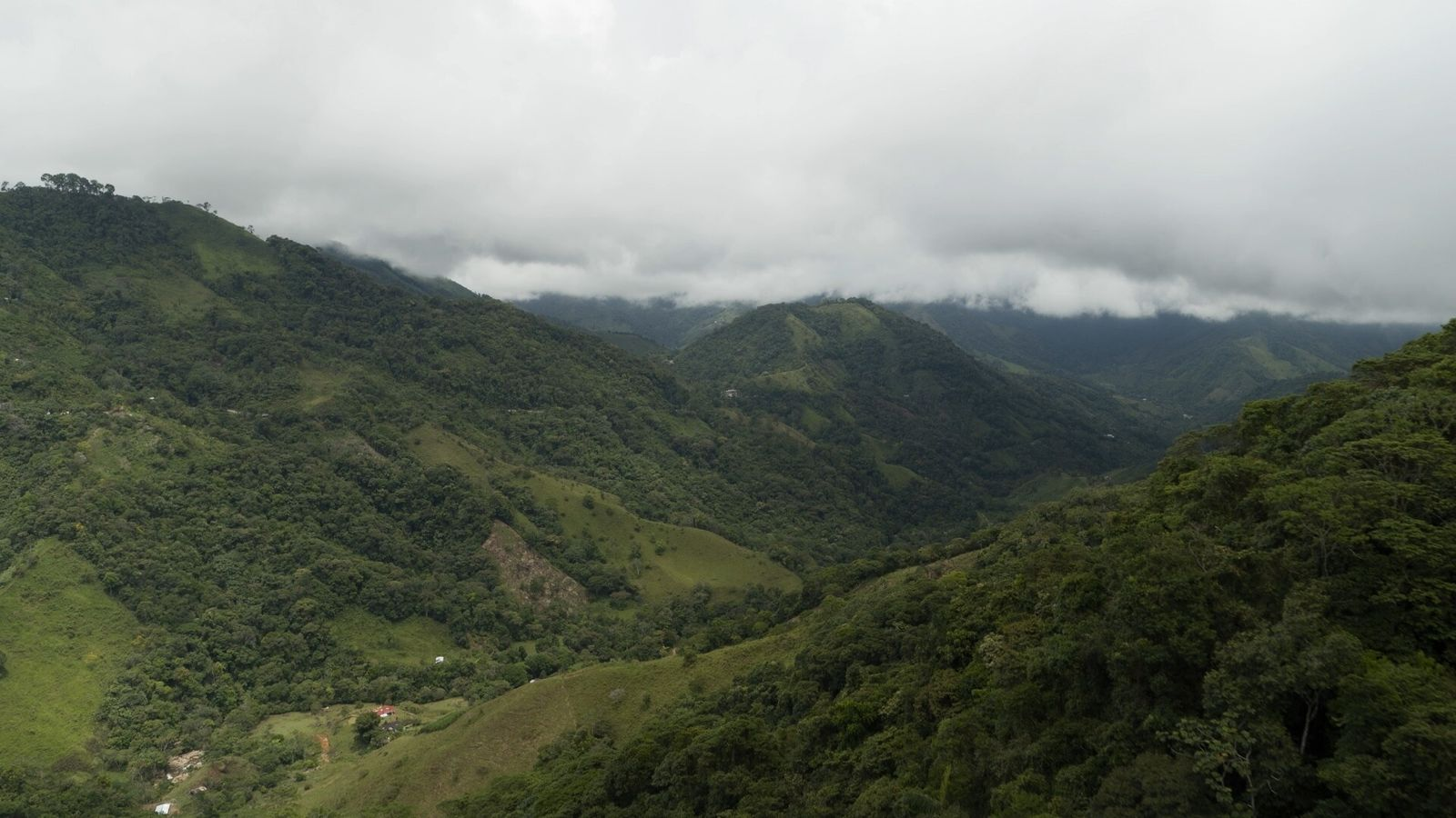 In the remoteness of the Colombian Amazon, farmers are partnering with Nespresso to revive a high-quality ...
