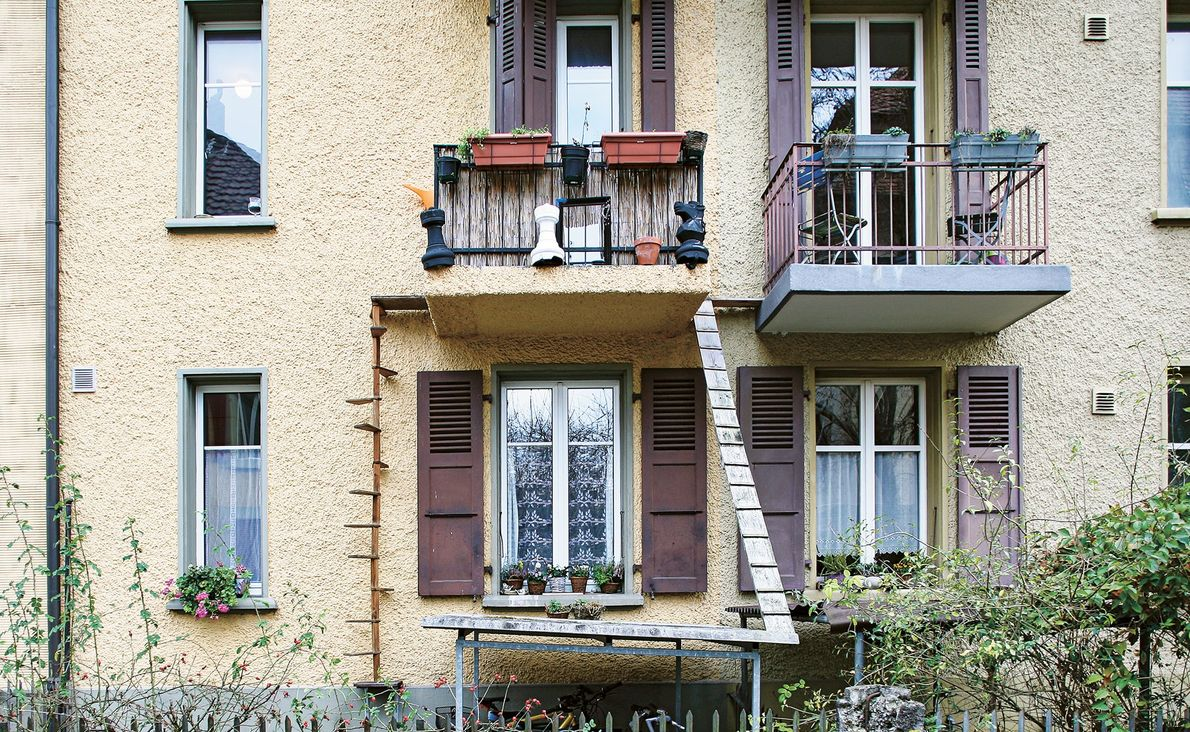 Cats can come and go from this balcony by way of the wooden spiral staircase or ...
