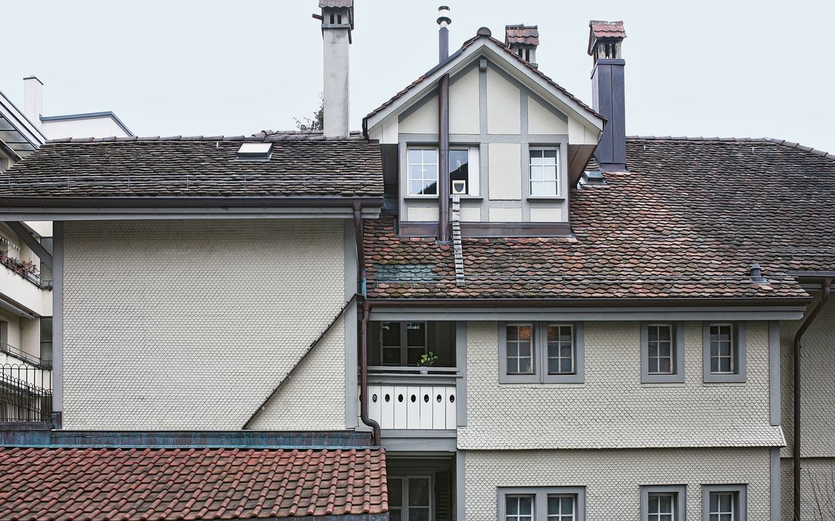 These ladders link several rooftops to help cats reach the window.