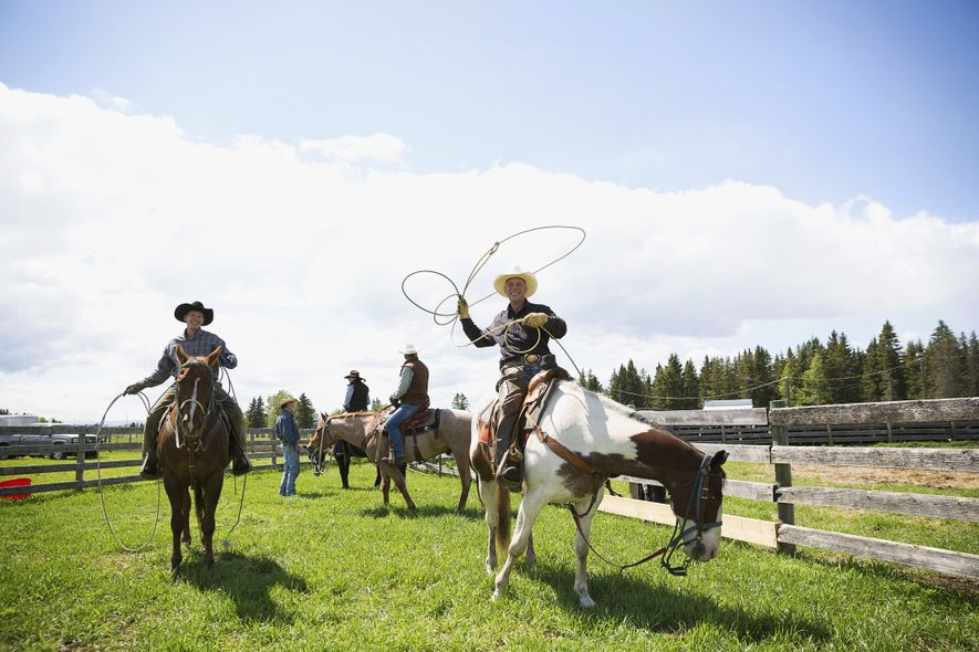 Cattle ranchers on horseback with lassos on a sunny ranch in Cochrane.