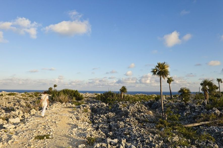 The Bluff, Cayman Brac