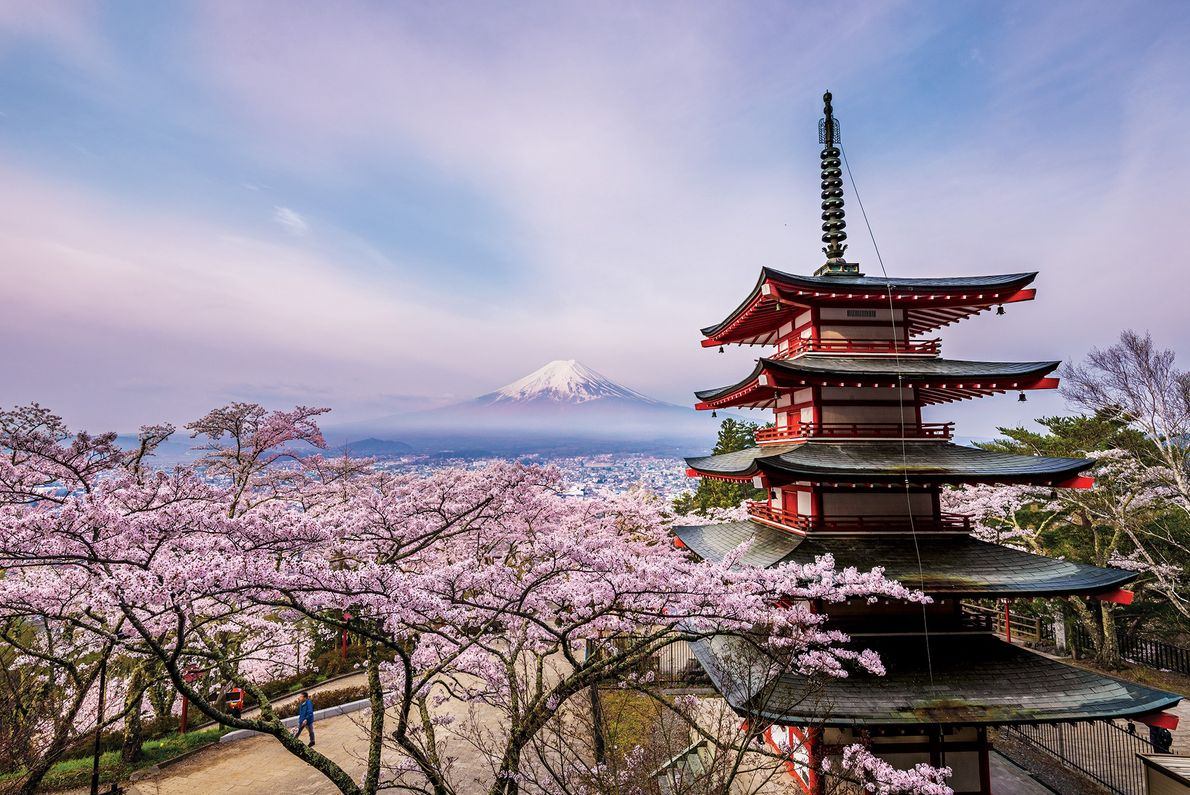 It is a five-storied pagoda of Arakurayama Sengen Park in Fujiyoshida City, Yamanashi Prefecture.
