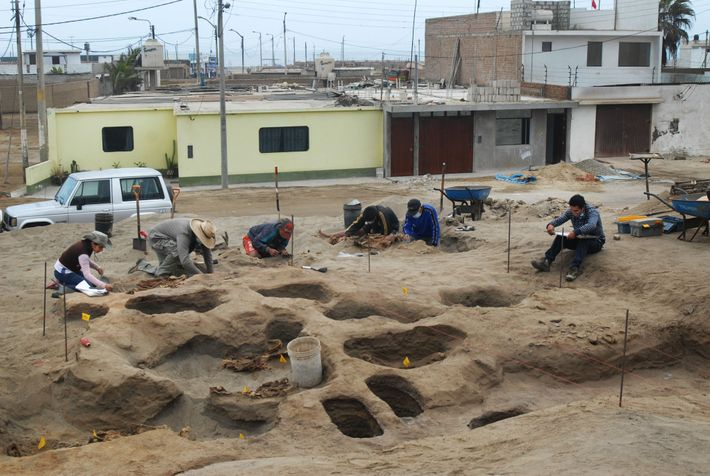 Archaeologist Gabriel Prieto, second from left, excavates the coastal lot where the ritual event took place ...