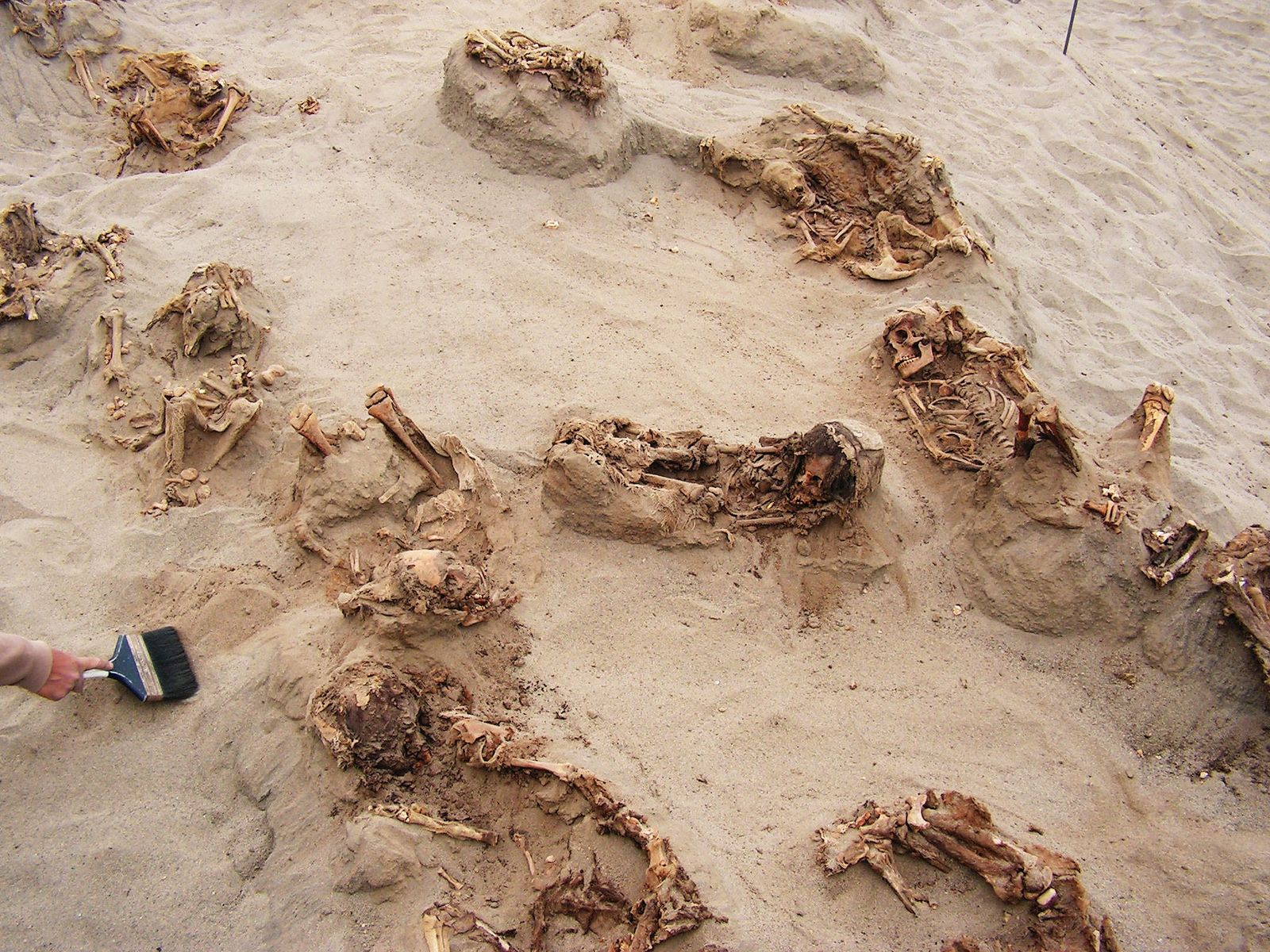 Preserved in dry sand for more than 500 years, more than a dozen children were revealed ...