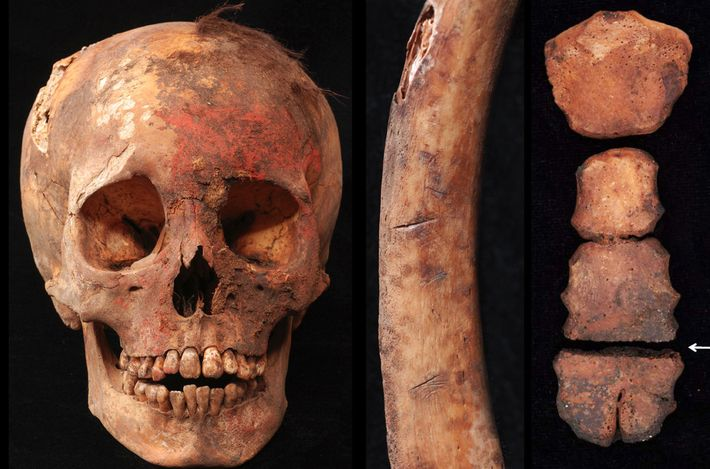 Evidence for the ritual killings includes a skull stained with red cinnabar-based pigment, a human rib ...