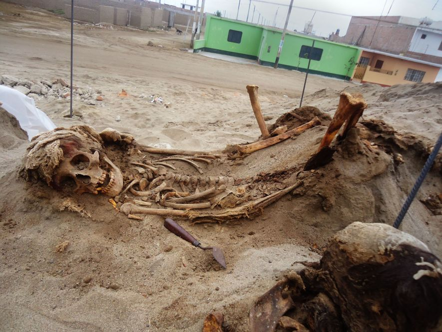 Local residents alerted archaeologist Gabriel Prieto to the sacrificial site in 2011, noting that human bones ...