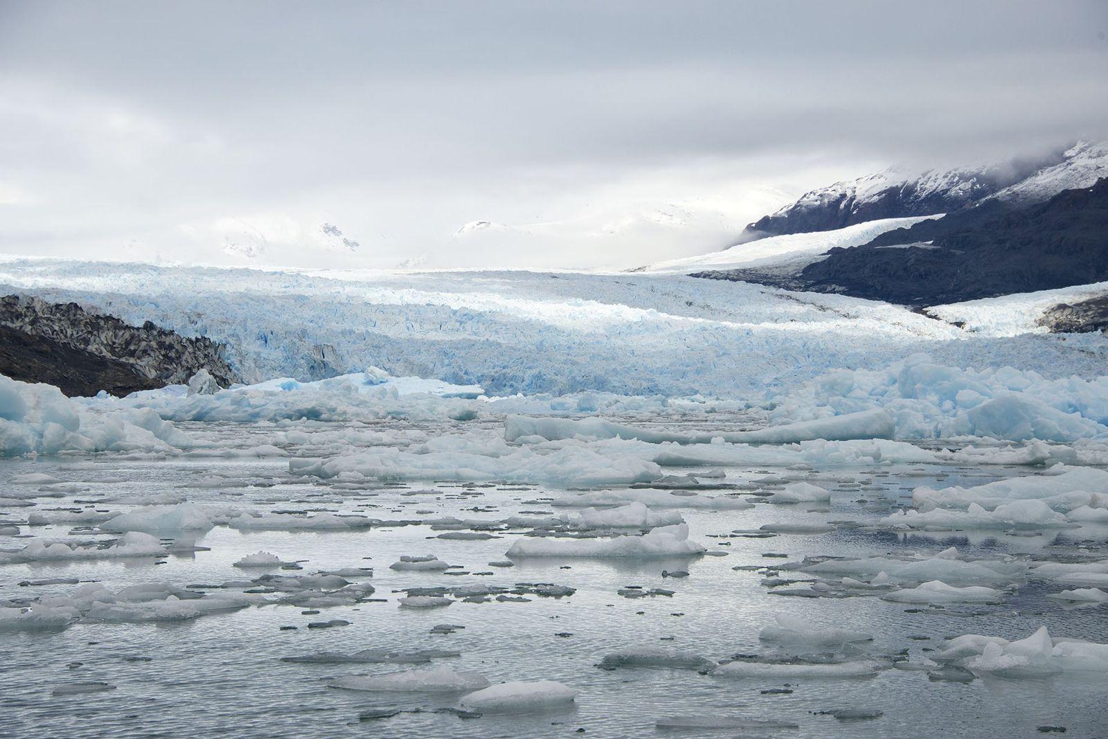 Jorge Montt Glacier