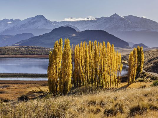 A road trip on Chile's wild new Route of Parks