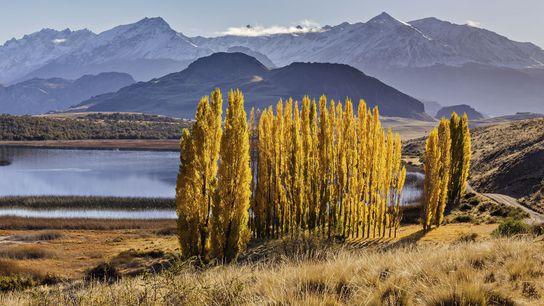 Patagonia Park.