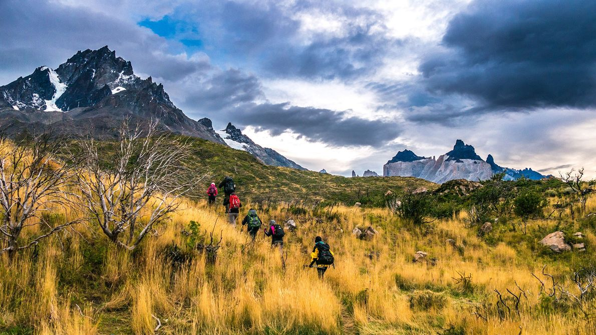 A group of hikers trek through the grassy plains of Torres del Paine National Park. Because ...