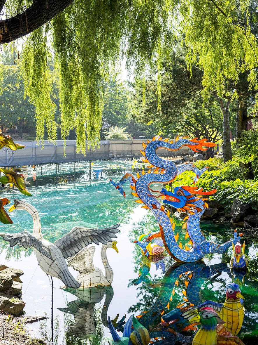 Colorful lanterns and traditional elements fill the Chinese Garden at the Montreal Botanical Garden, which is ...