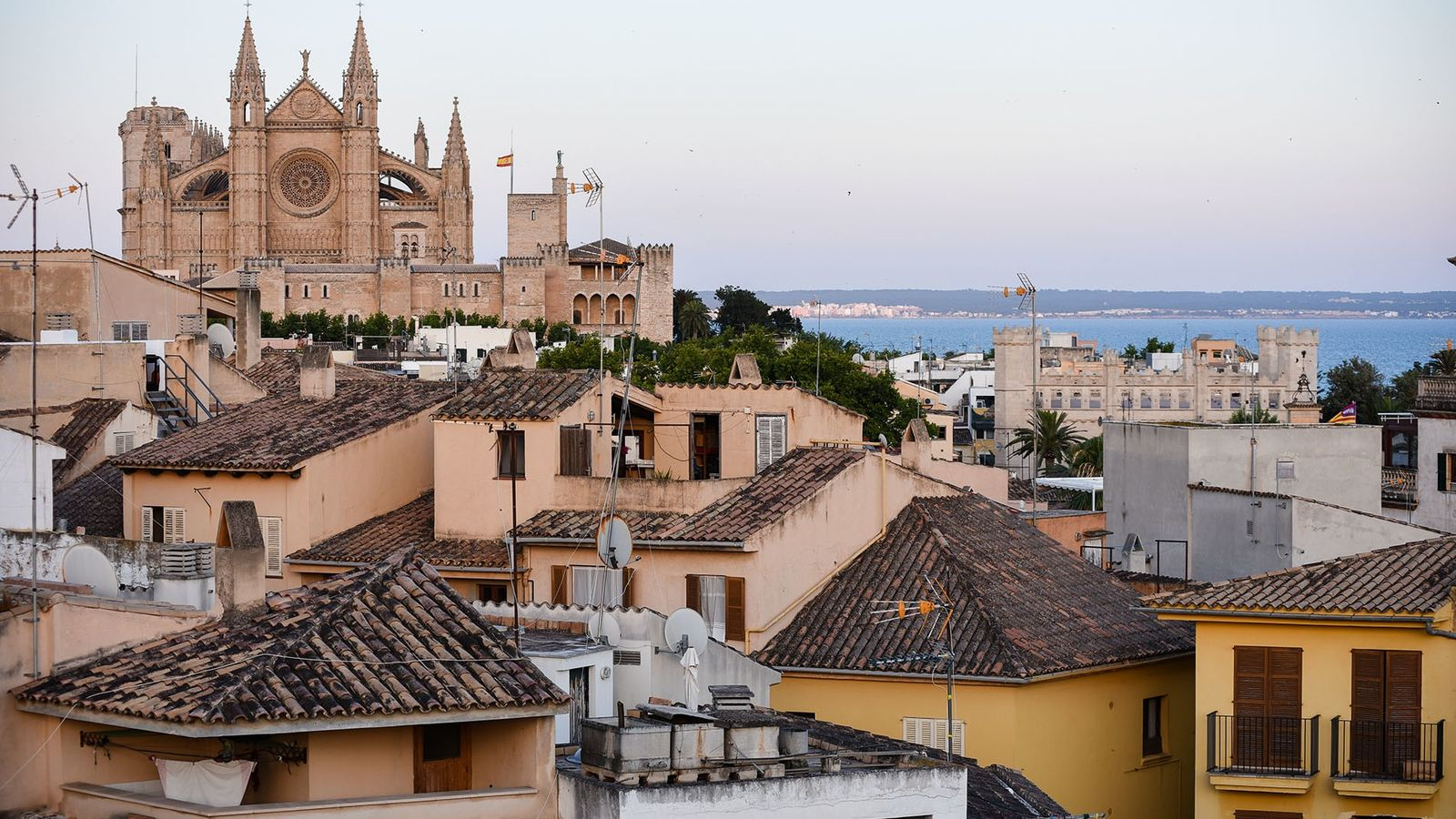 The honey-coloured Palma Cathedral lords itself over the city, with hordes arriving daily to queue to ...