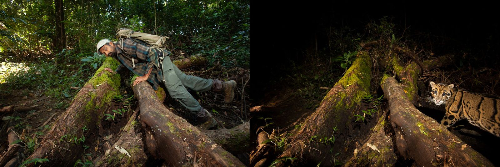 Testing a camera trap in the Dampa region of northeast India. The diligence paid off with ...