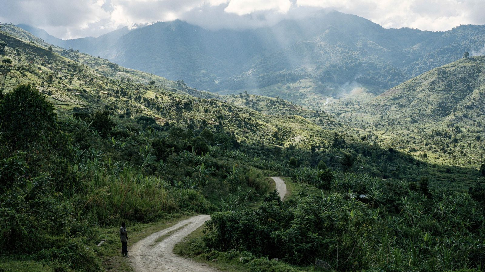 Haloed in saturated cloud cover, the Rwenzori mountains get their name from a Ugandan dialect's term ...